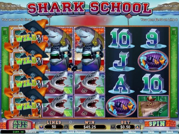 SharkSchool4