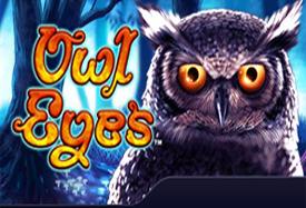Owl Eyes1
