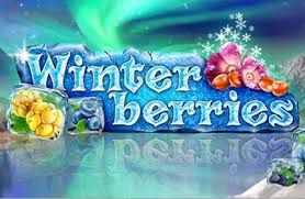 Winterberries main