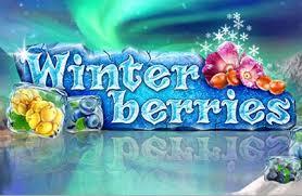 Winterberries main