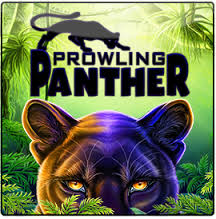 prowling-panther4